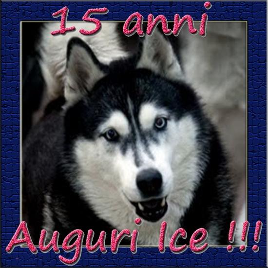 Auguri_Ice.jpg
