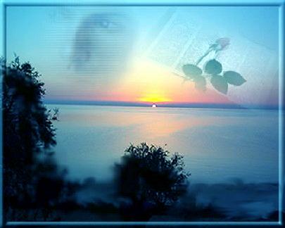 albalibro.jpg